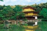 ◆希少品◆1000ピースジグソーパズル:金閣寺-京都《廃番商品》