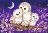 【取寄商品】★38%off★300ピースジグソーパズル:ぬくもり〜Owl Famiry〜(原井加代美)