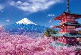 ★32%off★300ピースジグソーパズル:富士と桜舞う浅間神社