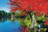 【取寄商品】★3割引!!★1000ピースジグソーパズル:秋映えの兼六園