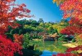 【取寄商品】★31%off★1000ピースジグソーパズル:彦根城と秋の玄宮園