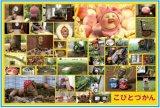 ■500ラージピースジグソーパズル:こびと観察入門《廃番商品》