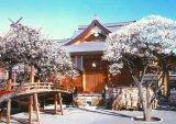 ■759スモールピースジグソーパズル:湯島天満宮-東京《廃番商品》