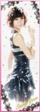 【引上品】■352ピースジグソーパズル:KARA Han Seung-Yeon ハン・スンヨン《廃番商品》