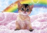 ■108ピースジグソーパズル:虹に願いを《カタログ落ち商品》