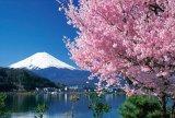 【取寄商品】★32%off★108ラージピースジグソーパズル:桜と富士(山梨)