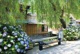 ★32%off★300ピースジグソーパズル:紫陽花の街角(静岡)