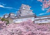 ★31%off★500ピースジグソーパズル:姫路城の満開桜-兵庫