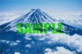 ■1000ピースジグソーパズル:シンプルスタイル 雲海に浮かぶ富士《カタログ落ち商品》