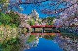 【取寄商品】★31%off★1000ピースジグソーパズル:桜咲く姫路城