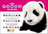 ◆希少品◆108ピースジグソーパズル:ザ・パンダ カシス《廃番商品》