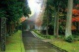 ★35%off★1000ピースジグソーパズル:平泉-仏国土を表す建築-中尊寺金色堂[日本]
