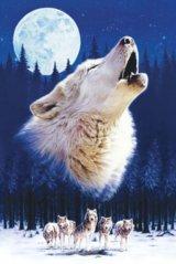 【引上品】◆希少品◆1500スモールピースジグソーパズル:ハウリング ウルフ《廃番商品》