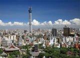 ■2014スモールピースジグソーパズル:東京スカイツリー®-天空へ届け-《廃番商品》