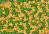 ◆希少品◆300ラージピースジグソーパズル:ポケットモンスターDP ピカチュウの森《廃番商品》