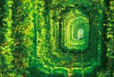 【引上品】■300ピースジグソーパズル:恋のトンネル《廃番商品》