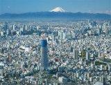 ■500スモールピースジグソーパズル:東京スカイツリー®-富士を望む-《廃番商品》