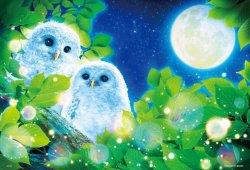 画像1: ★32%off★300ピースジグソーパズル:月夜のふくろう(ウィルファー)