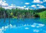★31%off★500ピースジグソーパズル:美瑛白金の青い池