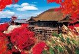★3割引!!★1000ピースジグソーパズル:秋に染まる清水寺