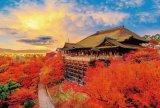 ■1000ピースジグソーパズル:秋色に染まる清水寺《廃番商品》