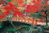 ◆希少品◆1000ピースジグソーパズル:秋に染まる紅葉谷《廃番商品》