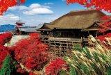 ◆希少品◆1000ピースジグソーパズル:秋に染まる清水寺《廃番商品》