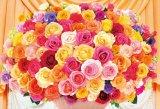 ■300ピースジグソーパズル:100本のバラ〜カラフル〜《廃番商品》