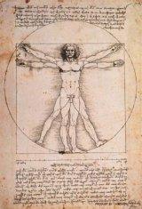 ■プチパズル204ピース:ウィトルウィス的人体図(ダ・ヴィンチ)《カタログ落ち商品》