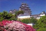 ■300ピースジグソーパズル:姫路城《廃番商品》