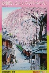 ★33%off★500ピースジグソーパズル:桜香る産寧坂-京都