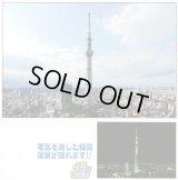 【取寄】1000スモールピース:東京スカイツリー® アナザーサイド
