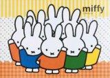 ■108ピースジグソーパズル:わくわくミッフィー《廃番商品》