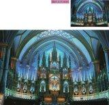 ■450スモールピースジグソーパズル:青光のノートルダム大聖堂(カナダ)/左右反転パズル《廃番商品》