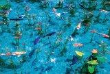 ★32%off★1000マイクロピースジグソーパズル:モネの池(岐阜)