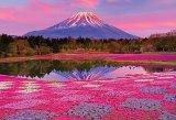 ★31%off★1000マイクロピースジグソーパズル:夕陽に染まる富士